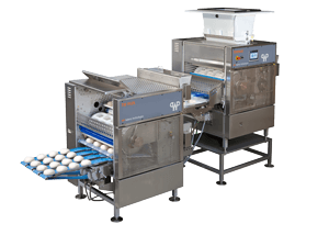 Pizza Production Equipment